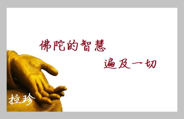 佛陀智慧遍及一切(第三世多杰羌佛)