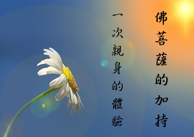 學習第三世多杰羌佛佛法